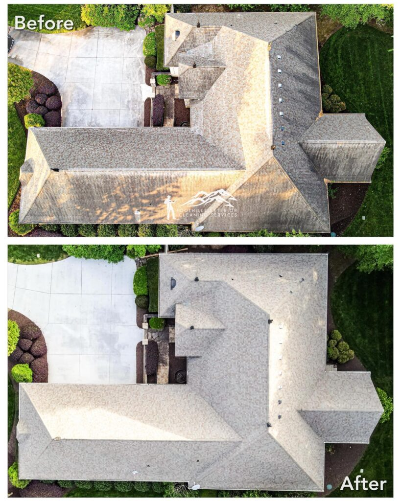Roof Cleaning Washing